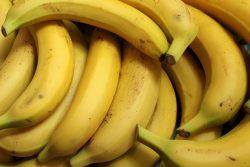 Dieta fenotypowa – czym jest?